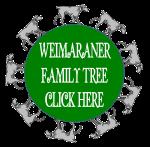 Weim6